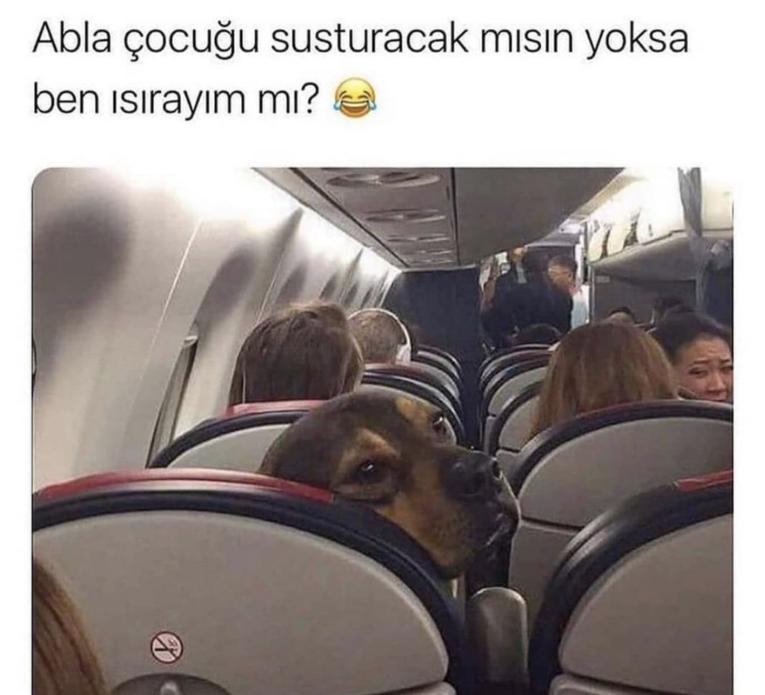 Uçak yolcukları...